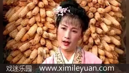 江苏徐州柳琴戏大